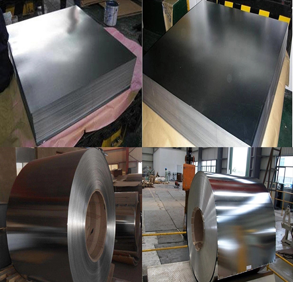 Electrolytic Tinplate Coil/Tinplate Sheet/SPCC Mr Tinplate Coil