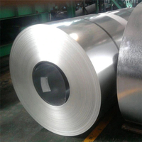 Hot Dipped Galvanized Steel PPGI HDG
